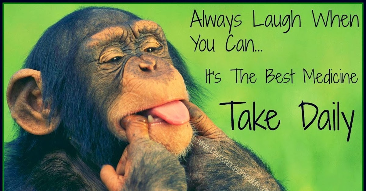 Read more about the article Just laugh with – Laughology